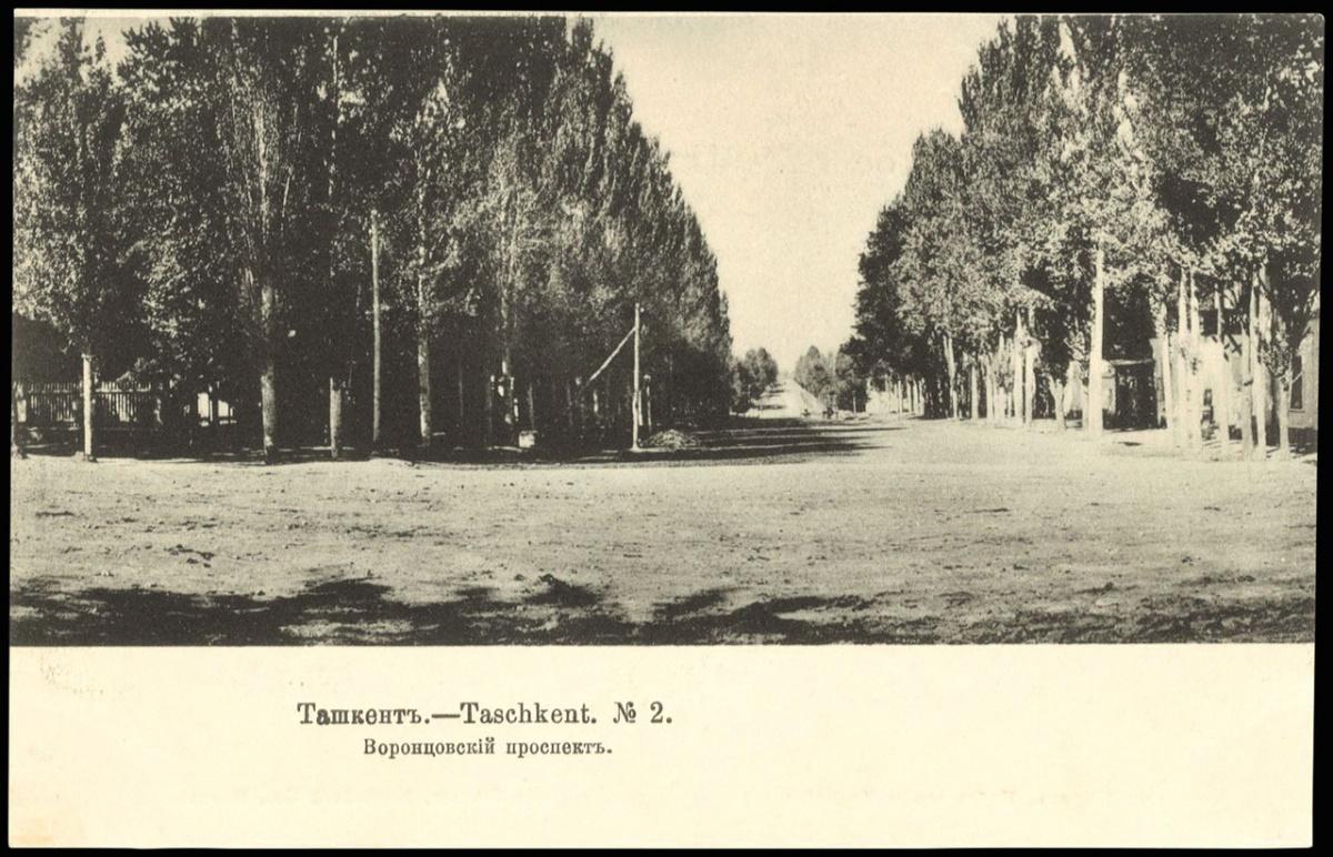 Облик Ташкента XIX века (взгляд приезжего)